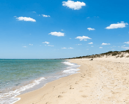 Best places to visit in Tyabb