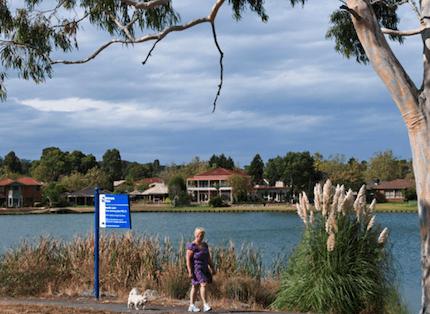 shot of Rowville Lake